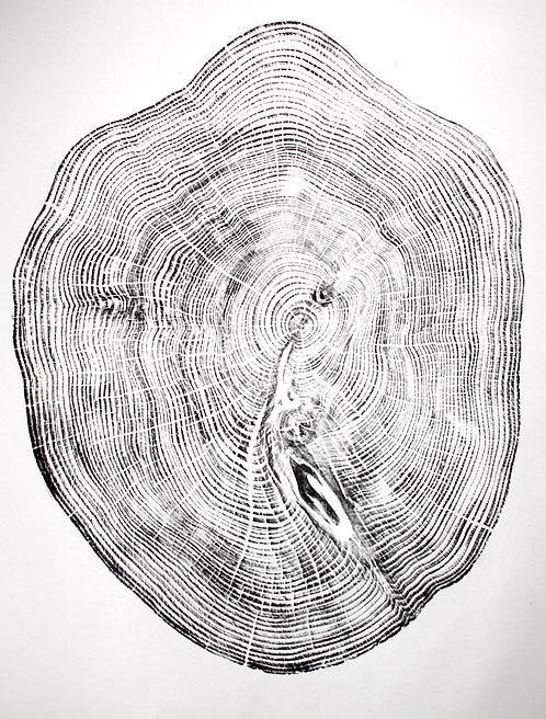 Reclaimed wood 1