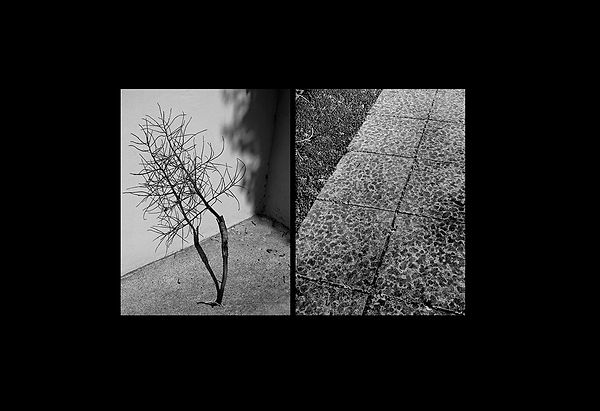 contradictions_07.jpg