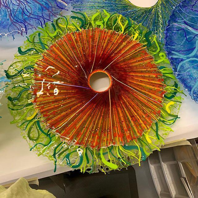 Glass Discs, Blitzer Gallery