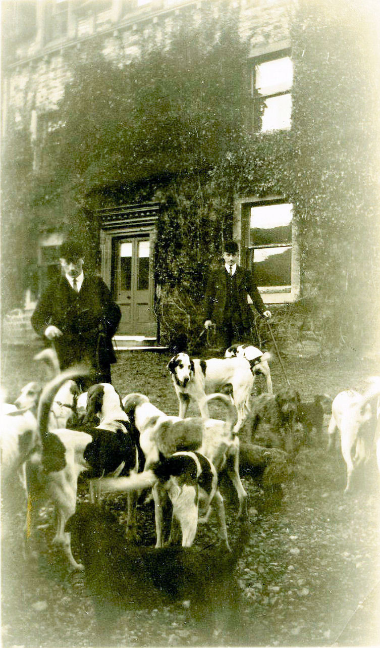 Hounds at The Rookery, courtesy of Rowly & Margaret Fawcett.