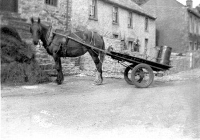 Horse and trailer, High Green Farm, Thor