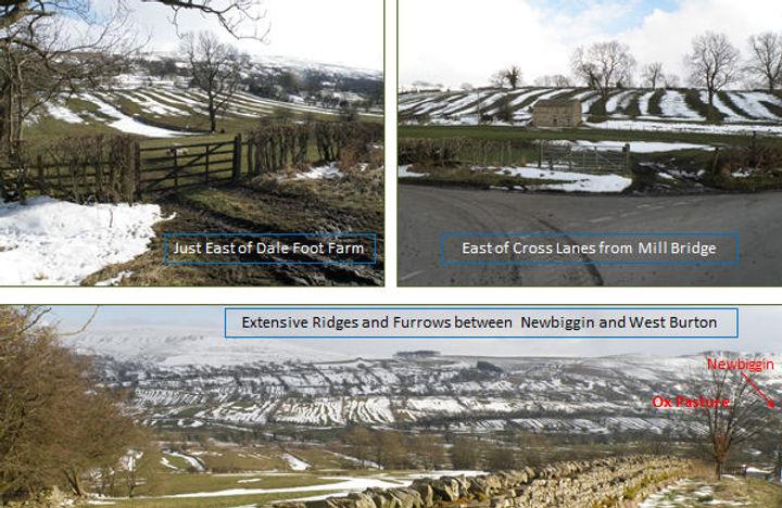 Medieval Ridges and Furrows in Newbiggin Township