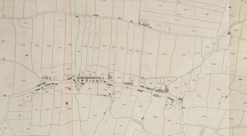 Newbiggin Village Tithe Map, 1839