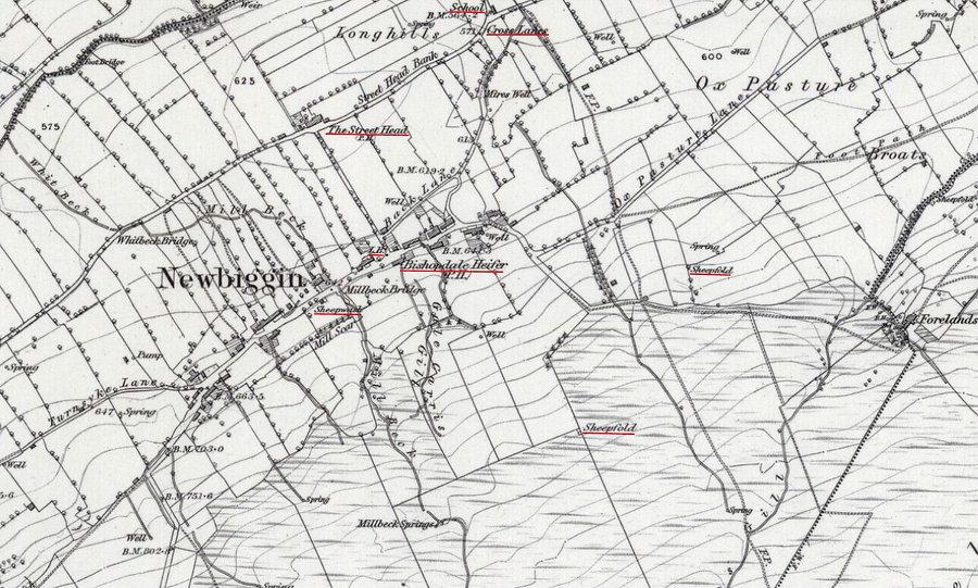 Newbiggin Village O.S. 1891