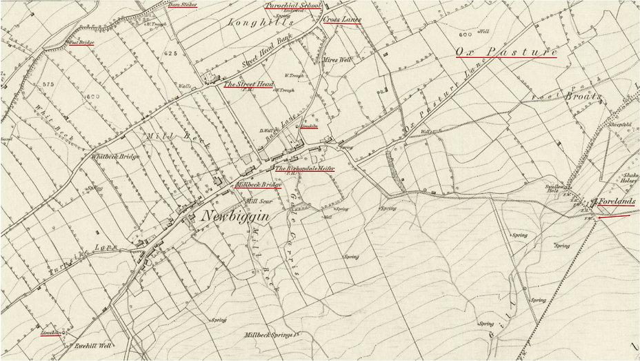 Newbiggin Village O.S. 1856