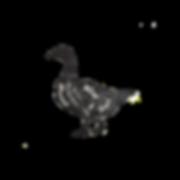duck-butcher-diagram-prints_edited_edite