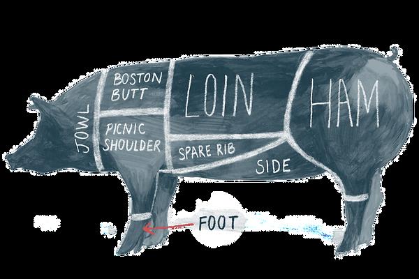 SPR_995306-pig-diagram-and-pork-chart-5a