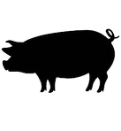 pig-silhouette-260nw-472297432_edited.pn