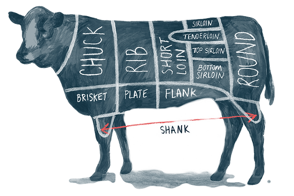 SPR_995304-cuts-of-beef-chuck-loin-rib-b