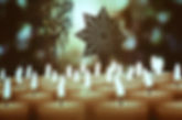 Advent_2018_043.JPG