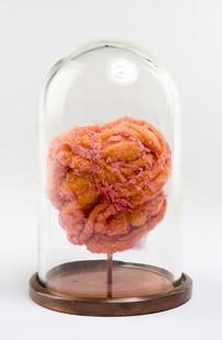 Heart Brain