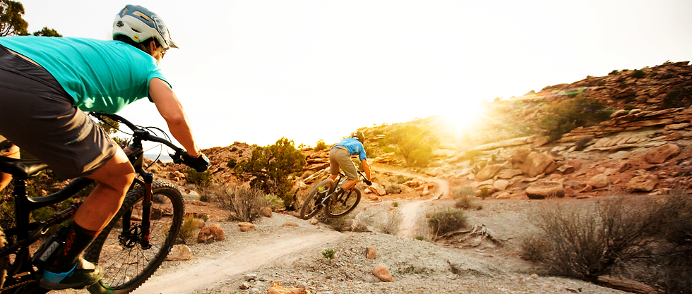 Sequoia_Sports_Header_Custom_Bikes_IBIS_