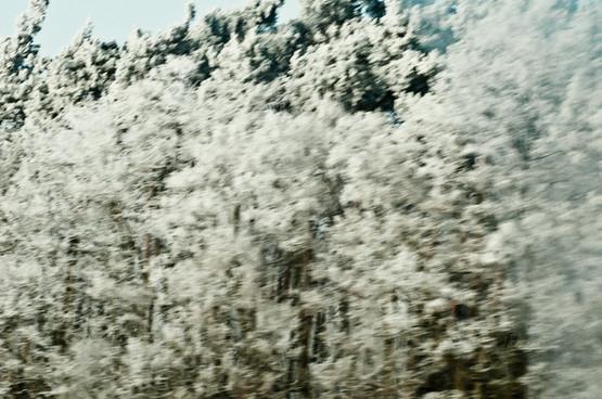 02 Iced Fields 025.jpg