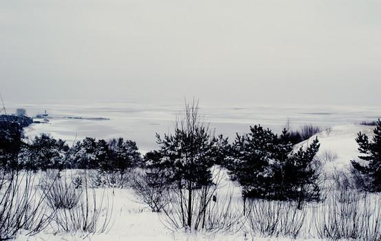 02 Iced Fields 054 copy.jpg