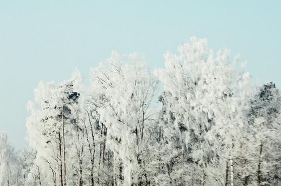 02 Iced Fields 031.jpg