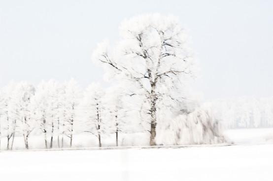 02 Iced Fields 010.jpg