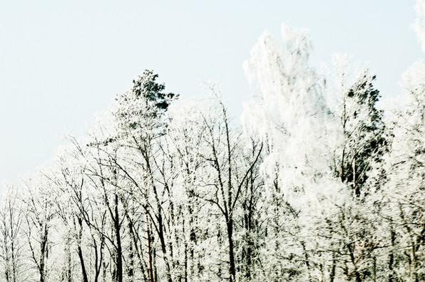 02 Iced Fields 019.jpg