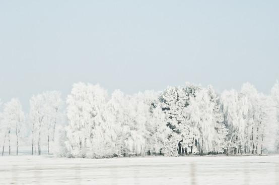 02 Iced Fields 003.jpg