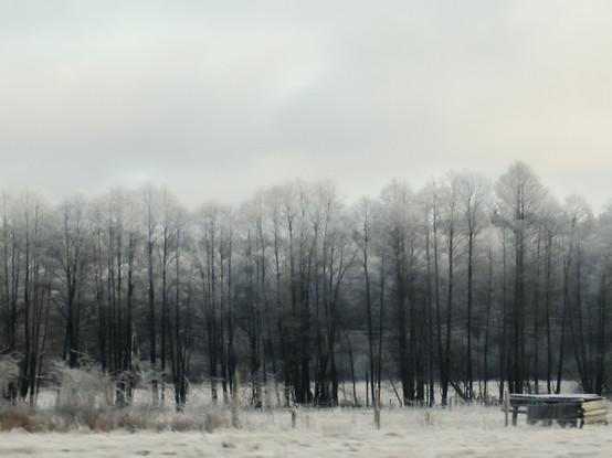 02 Iced Fields 043 copy.jpg