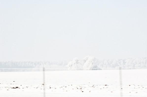 02 Iced Fields 014.jpg