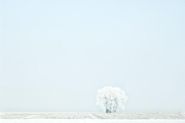 02 Iced Fields 001.jpg