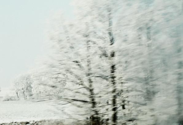 02 Iced Fields 027.jpg
