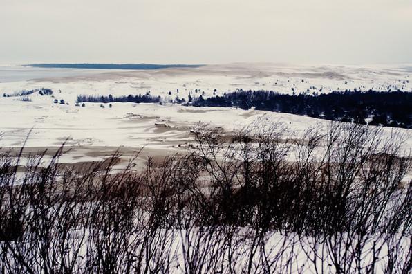 02 Iced Fields 053 copy.jpg