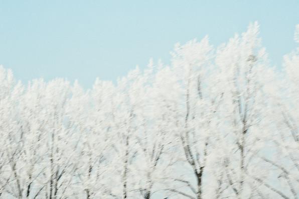 02 Iced Fields 028.jpg