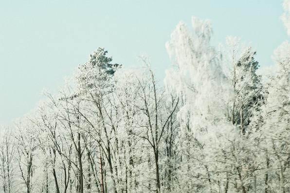02 Iced Fields 032.jpg