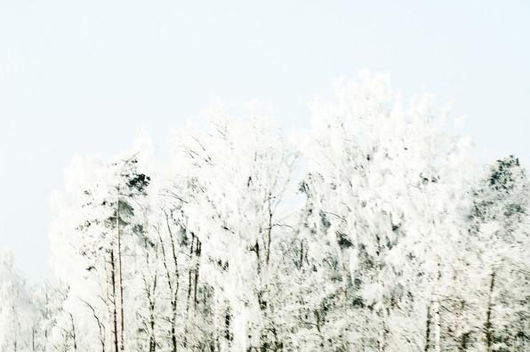 02 Iced Fields 018.jpg