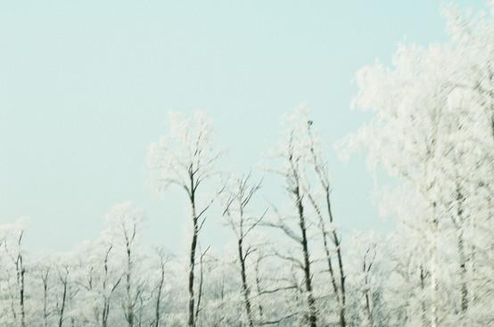 02 Iced Fields 033.jpg
