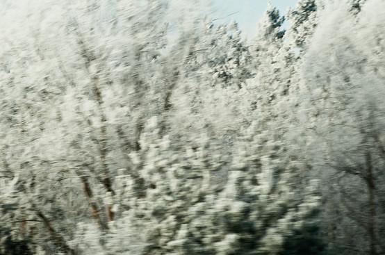 02 Iced Fields 024.jpg