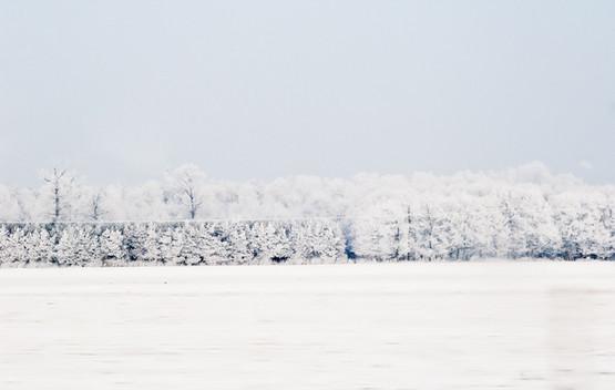 02 Iced Fields 015.jpg