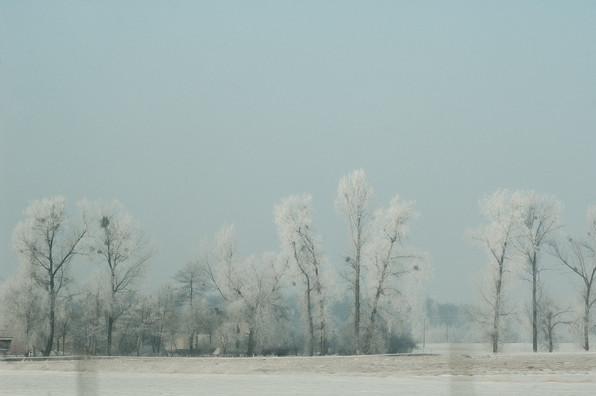 02 Iced Fields 038.jpg