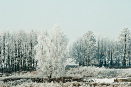 02 Iced Fields 026.jpg
