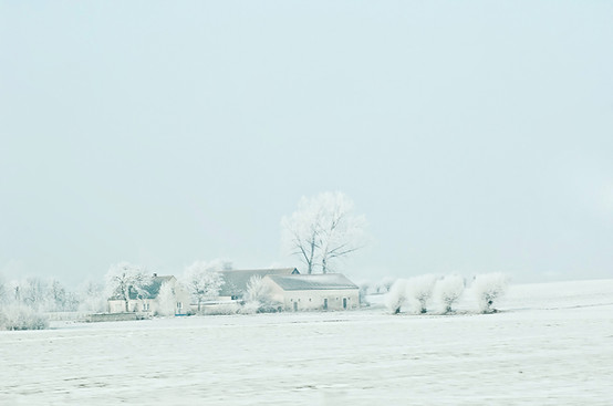02 Iced Fields 004.jpg