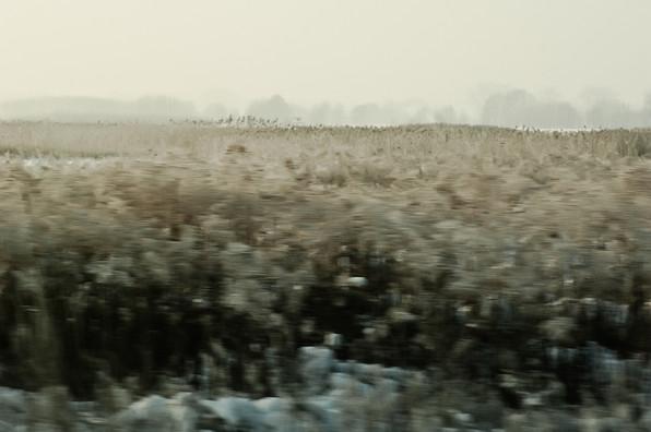 02 Iced Fields 055 copy.jpg