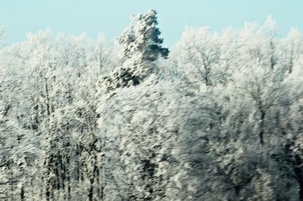 02 Iced Fields 030.jpg