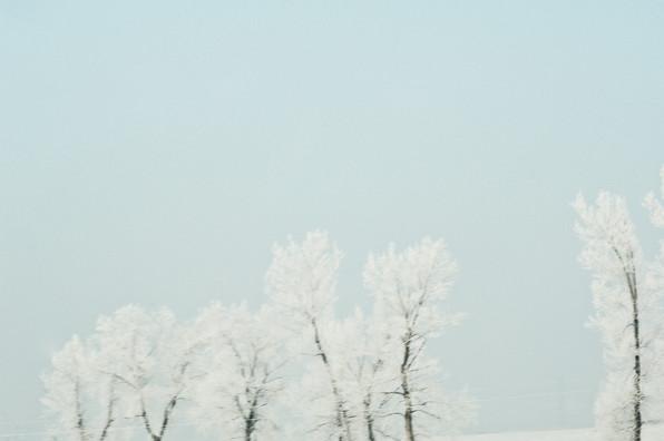 02 Iced Fields 022.jpg