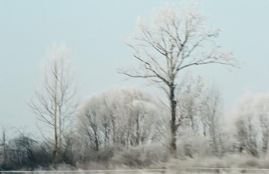 02 Iced Fields 029.jpg