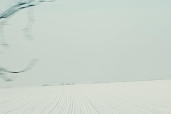 02 Iced Fields 048.jpg