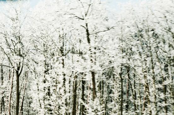02 Iced Fields 020.jpg