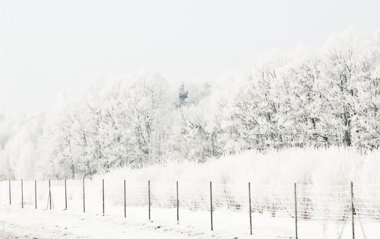 02 Iced Fields 008.jpg