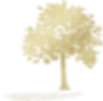 tree-silhouettes-5067789_1920.png