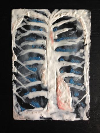 Ribs and Organs