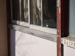 【TSJが廃校利活用に着手:千葉県君津市旧香木原小学校跡地】2月13日
