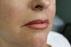 Full Color Lipstick Lips