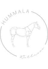 Hummala logo vaaleansininen.png