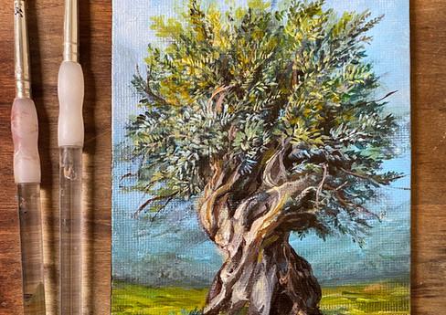 "VESNA -OLIVE - 5""x7"" Acrylic on Canvas"