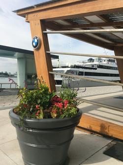 BMW - ReNuTeq - Luke Schuette